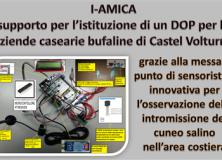 IAMC DOP